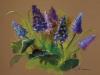 blauwe-druifjes in pastelstudie